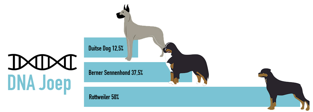 dna test hond resultaat