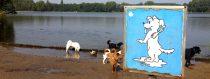 Zwemfestijn in Delftse Hout