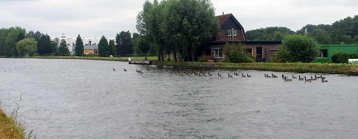 Rijn-Schiekanaal